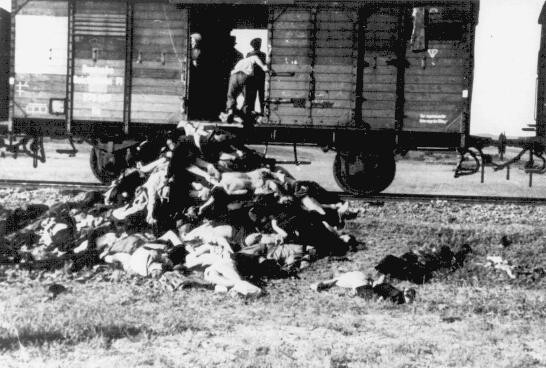 Along the route from Iasi to either Calarasi or Podul IIoaei, Romanians remove corpses from a train carrying Jews deported from Iasi ... [LCID: 60517j]