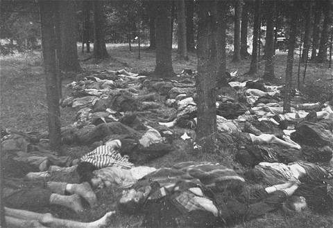 Corpses of prisoners killed in the Gunskirchen camp. [LCID: 12771]