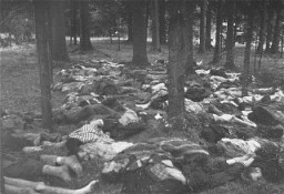 <p>Corpses of prisoners killed in the Gunskirchen camp. Gunskirchen was one of the many subcamps of the Mauthausen camp. It was liberated by US forces in early May 1945. Gunskirchen, Austria, photo taken between May 6 and May 15, 1945.</p>