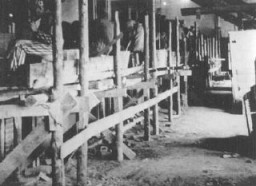 <p>Prisoners at forced labor in the brick factory at Neuengamme concentration camp. Germany, date uncertain.</p>