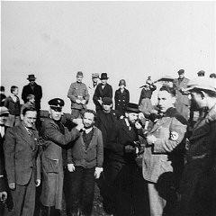 <p>Germans humiliate religious Jews in Tarnow. Poland, 1940.</p>