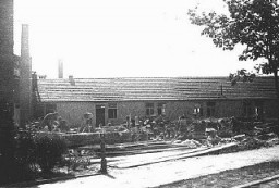 Internés juifs au travail forcé dans le camp de Plaszow.