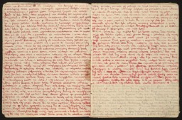 Pages from Stanislava Roztropowicz's Diary
