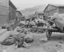 "<p>Corpses found when US troops liberated the <a href=""/narrative/7864/en"">Gusen</a> camp, a subcamp of the <a href=""/narrative/3880/en"">Mauthausen</a> concentration camp. Austria, after May 12, 1945.</p>"