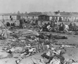 "<p>Soon after liberation, camp survivors eat near scattered corpses. <a href=""/narrative/4549"">Bergen-Belsen</a>, Germany, after April 15, 1945.</p>"