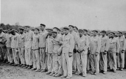 "<p>Prisoners during a roll call at the <a href=""/narrative/3956/en"">Buchenwald</a> concentration camp. Their uniforms bear classifying triangular badges and identification numbers. Buchenwald, Germany, 1938–41.</p>"