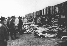 <p>During the deportation of survivors of a pogrom in Iasi to Calarasi or Podul Iloaei, Romanians halt a train to throw off the bodies of those who had died on the way. Romania, July 1941.</p>