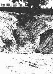 """<p>A mass grave dug by Jewish forced laborers for the bodies of individuals murdered by the NKVD in Lvov prisons. The NKVD (Soviet secret police) murdered thousands of Ukrainian nationalists, as well as some Jews and Poles, before retreating from the <a href=""""/narrative/2972"""">Nazi invasion</a>. The Germans and their Ukrainian collaborators then used the massacre as a pretext for anti-Jewish <a href=""""/narrative/3487"""">pogroms</a>, claiming that the Jews had helped the secret police. Lvov, Poland, July 3, 1941.</p>"""