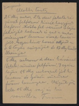 "<p>Ilona Kellner and her family lived in Pelsöc, which became part of <a href=""/narrative/6206"">Hungary</a> before <a href=""/narrative/2388"">World War II</a>. Following the <a href=""/narrative/6229"">German occupation of Hungary</a>, Ilona, her sister Vera, and her parents Karoly and Jolan were forced into a <a href=""/narrative/286"">ghetto</a> in another area of the town. In mid-June, the family was <a href=""/narrative/5041"">deported</a> to the <a href=""/narrative/3673"">Auschwitz</a> camp in <a href=""/narrative/4879"">German-occupied Poland</a>. Ilona's parents were killed in the <a href=""/narrative/4537"">gas chambers</a> at Birkenau.</p>