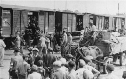 Jews from the Lodz ghetto are loaded onto freight trains for deportation to the Chelmno killing center. [LCID: 02625]