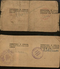 "<p>On December 17, 1941, the Romanian government issued a decree requiring a census of all those with ""Jewish blood."" All persons having one or two Jewish parents or two Jewish grandparents were ordered to register at the Central Jewish Office. This is a census certificate issued by that office in 1942.</p>"