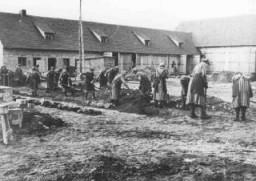 ラーフェンスブリュック強制収容所で強制労働に従事する囚人たち。