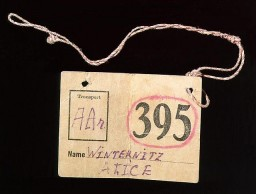 "<p>This paper tag identified bedding belonging to Alice (Lisl) Winternitz when she was deported from Prague, Czechoslovakia, to the <a href=""/narrative/5386/en"">Theresienstadt</a> ghetto in June 1942.</p>"