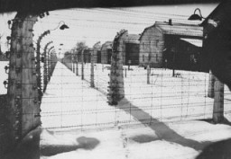 View of a section of the barbed-wire fence and barracks at Auschwitz at the time of the liberation of the camp. [LCID: 11058]