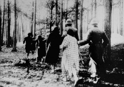 SS personnel lead Polish women into a forest for execution