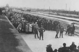 """<p>Un convoi de Juifs hongrois fait la queue sur la rampe de sélection au centre de mise à mort d'<a href=""""/narrative/3673/fr"""">Auschwitz</a>-Birkenau, en Pologne occupée. Mai1944.</p> <p>À la mi-mai1944, les autorités hongroises, en coordination avec la police de sécurité allemande, commencèrent à déporter les Juifs de manière systématique. Le colonel SS <a href=""""/narrative/11547/fr"""">Adolf Eichmann</a> était le chef de l'équipe des «experts en déportation» qui travaillait avec les autorités hongroises. La police hongroise s'occupait des rafles et faisait monter de force les Juifs dans les trains de déportation.</p> <p>En moins de deux mois, ce sont près de 440000 Juifs qui furent déportés de <a href=""""/narrative/6229/fr"""">Hongrie</a>, dans plus de 145 trains.</p>"""