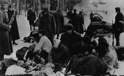 ユダヤ人囚人を射殺する前に衣服を脱ぐように命令するドイツ警察とウクライナの協力者。