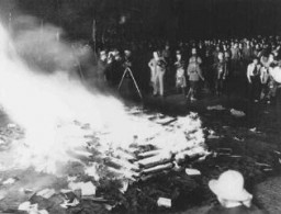"Public burning of ""un-German"" books in the Opernplatz. [LCID: 70137]"
