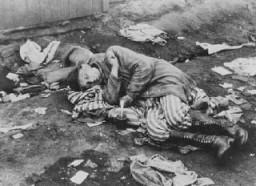 """<p>A survivor of the <a href=""""/narrative/4549/en"""">Bergen-Belsen camp</a>, photographed soon after liberation. Bergen-Belsen, Germany, after April 12, 1945.</p>"""