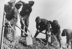 <p>Jews from a Slovak labor battalion working at road building. Slovakia, December 1941. </p>