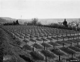 Cementerio de Hadamar donde las víctimas del exterminio por eutanasia de Hadamar fueron enterradas.