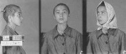 <p>Fotos de identificação de uma prisioneira do campo de Auschwitz. Polônia, entre 1942 e 1945.</p>