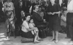 <p>Réfugiés juifs polonais arrivant à Vienne dans le cadre de la Brihah (fuite massive des Juifs d'Europe orientale après-guerre). Autriche, été 1946.</p>