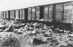 "<p>Rail cars discovered by Soviet forces and containing possessions taken from deportees. This abandoned train was on the way to Germany loaded with personal effects (in this case, pillows) taken from <a href=""/narrative/3673"">Auschwitz</a> victims. Auschwitz, Poland, after January 27, 1945.</p>"