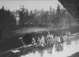 "<p>Prisoners from the <a href=""/narrative/4391/en"">Dachau</a> concentration camp on a <a href=""/narrative/2931/en"">death march</a> south toward Wolfratshausen. Germany, between April 26 and 29, 1945.</p>"