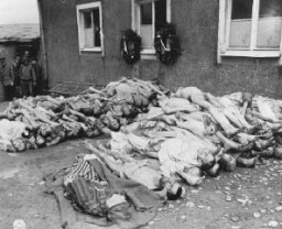 <p>The bodies of former prisoners are stacked outside the crematorium in the newly liberated Buchenwald concentration camp. Buchenwald, Germany, April 23, 1945.</p>