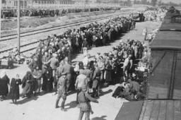 <p>عملية اختيار يهود مجريين في مركز القتل أوشفيتز ـ بيركيناو. بولندا, مايو 1944.</p>