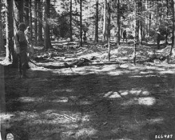 """<p>US troopsview corpses of prisoners massacred by SS guards in a wooded area near the <a href=""""/narrative/8071/en"""">Kaufering</a> IV subsidiary camp of the <a href=""""/narrative/4391/en"""">Dachau</a> concentration camp. Landsberg- Kaufering, Germany, April 30, 1945.</p>"""