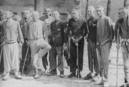 """<p>Survivors in Langenstein after the camp was liberated by the <a href=""""/narrative/7877/en"""">83rd Infantry Division</a>. Langenstein, Germany, April 17, 1945.</p>"""
