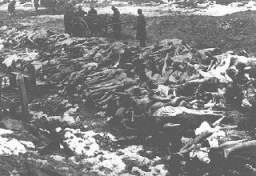 <p>Bodies of Soviet prisoners of war who died in an unidentified camp. Place and date uncertain (after the German invasion of the Soviet Union).</p>