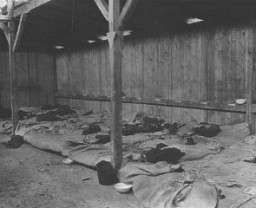 <p>Interior view of prisoners' barracks at the Ohrdruf subcamp of the Buchenwald concentration camp. This photograph was taken after liberation. Ohrdruf, Germany, April 13, 1945.</p>