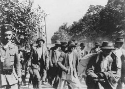 "<p>Serbs and <a href=""/narrative/4500/en"">Roma</a> (Gypsies) who have been rounded up for deportation are marched to the <a href=""/narrative/5875/en"">Jasenovac</a> concentration camp under Ustasa guard. Yugoslavia, 1942–43.</p>"