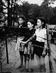"<p>Jewish children, forcibly removed by British soldiers from the ship <a href=""/narrative/5265""><em>Exodus 1947</em></a>, stand behind a barbed-wire fence. Photograph taken by Henry Ries. Poppendorf displaced persons camp, Germany, September 1947.</p>"