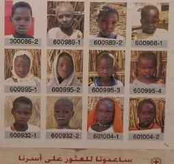 Çad'daki mülteci kampındaki çocukların fotoğraflarını gösteren Uluslararası Kızıl Haç Afişi.