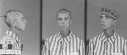 <p>一位奥斯威辛集中营犹太囚犯的身份照片。拍摄地点:波兰;拍摄时间:1940 年到 1945 年间。</p>
