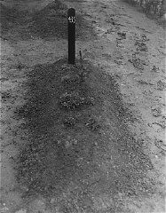 <p>View of one of the mass graves at the Hadamar Institute. This photograph was taken by an American military photographer soon after the liberation. Germany, April 5, 1945.</p>