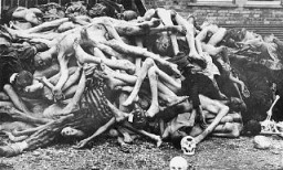 <p>The bodies of former prisoners are piled outside the crematorium at the newly liberated Dachau concentration camp. Dachau, Germany, April–May 1945.</p>