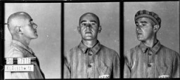 <p>Identification pictures of a prisoner, accused of homosexuality, who arrived at the Auschwitz camp on June 6, 1941. He died there a year later. Auschwitz, Poland.</p>