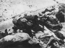 <p>A német SS és a magyar nyilaskeresztes terror áldozatai a gettóban. A holttesteket a Dohány utcai zsinagóga udvarán találták meg. Budapest, Magyarország, 1945. január.</p>