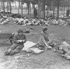 "<p>Soon after <a href=""/narrative/8176/en"">liberation</a>, women camp survivors prepare food near piles of dead bodies. Bergen-Belsen, Germany, after April 15, 1945.</p>"