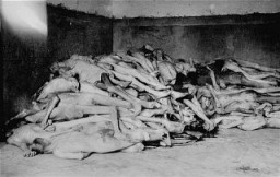 <p>The bodies of former prisoners are piled in the crematorium mortuary in the newly liberated Dachau concentration camp. Dachau, Germany, April 29, 1945.</p>