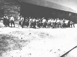 Judíos en trabajos forzados en un campo militar en Sarajevo.
