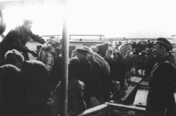 "<p>Jews forced to board a deportation ship in the Danube River port of Lom during deportations from Bulgarian-occupied territories. They were deported, through <a href=""/narrative/6000"">Vienna</a>, to the <a href=""/narrative/3819"">Treblinka</a> camp in German-occupied Poland. Lom, Bulgaria, March 1943.</p>"