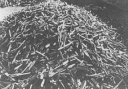 <p>مرنے والوں کے ہیئر برش جو آشوٹز کو آزاد کرائے جانے کے فوراً بعد ملے۔ پولینڈ، 27 جنوری 1945 کے بعد۔</p>