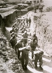 "<p>Prisoners at forced labor in the quarry of the <a href=""/narrative/11258/en"">Mauthausen</a> concentration camp. Austria, date uncertain.</p>"