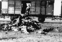 "<p>Along the route from Iasi to either Calarasi or Podul IIoaei, Romanians remove corpses from a train carrying Jews deported from Iasi following a <a href=""/narrative/3487/en"">pogrom</a>. Romania, late June or early July 1941.</p>"